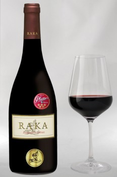 RAKA Biography Shiraz 2017